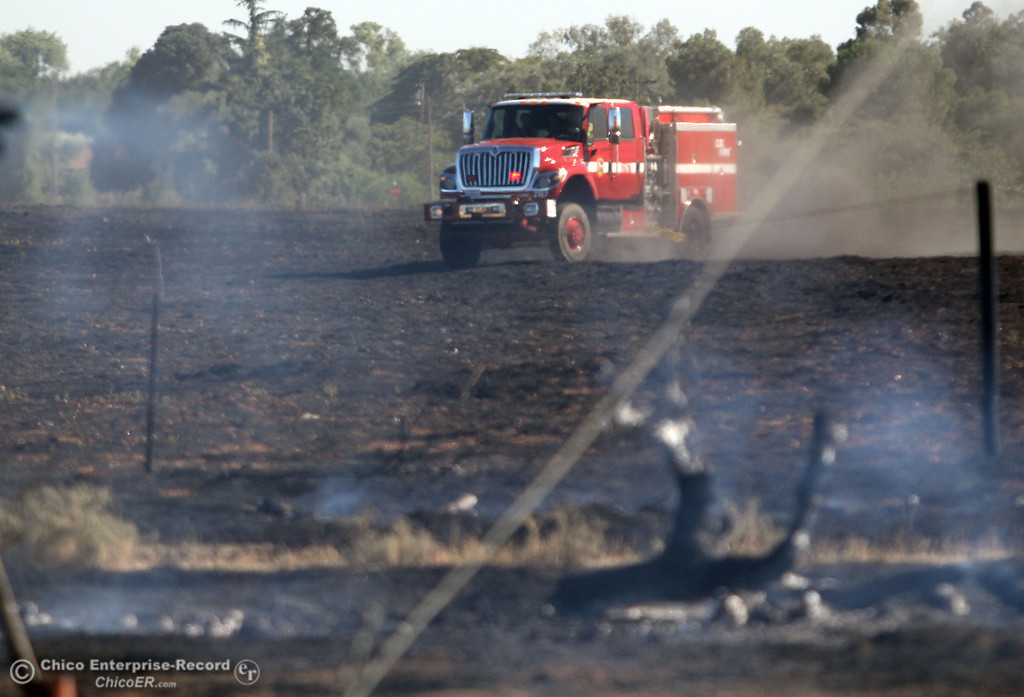 . Cal Fire - Butte County firefighters battle a fire off Vineyard Lane Friday, July 12, 2013 in Oroville, Calif.  (Jason Halley/Chico Enterprise-Record)