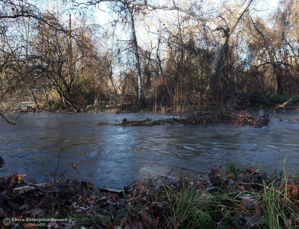 . High waters of Big Chico Creek rushes as cold temperatures brought a small layer of frost into lower Bidwell Park on December 27, 2012 in Chico, Calif (Jason Halley/Enterprise-Record)