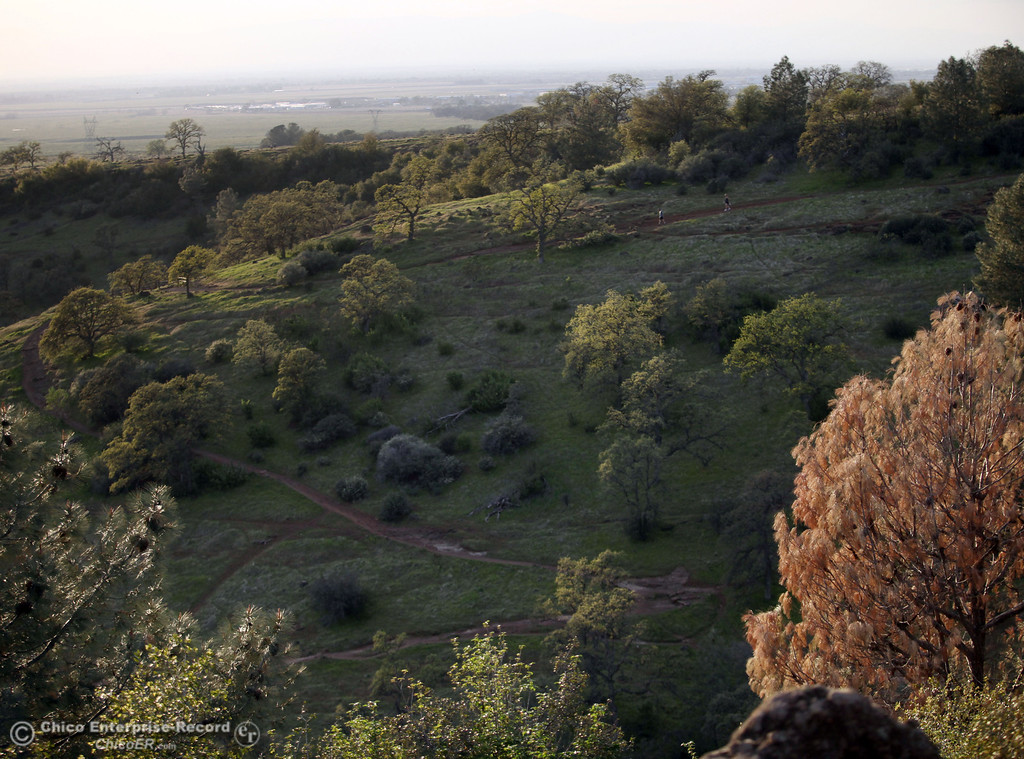 . A view from Monkey Face in upper Bidwell Park on March 13, 2013 in Chico, Calif. (Jason Halley/Chico Enterprise-Record)