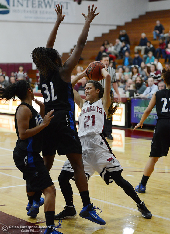 . Chico State\'s #21 Courtney Hamilton looks to pass against Cal State San Bernardino\'s #32 Jazzmyn Davis (center) and #4 Alexcia Mack (left) in the second half of their women\'s basketball game at CSUC Acker Gym Saturday, February 8, 2014 in Chico, Calif.  (Jason Halley/Chico Enterprise-Record)