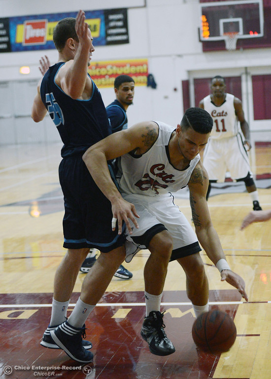 . Chico State\'s #25 Chris Magalotti (right) dribbles against Sonoma State\'s #35 Justin Herold (left) in the first half of their men\'s basketball game at CSUC Acker Gym Friday January 31, 2014 in Chico, Calif. (Jason Halley/Chico Enterprise-Record)