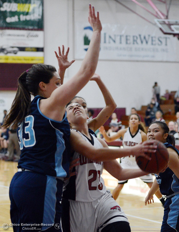 . Chico State\'s #23 Jazmine Miller (right) goes up for a shot against Sonoma State\'s #33 Natalie Del Carlo (left) in the second half of their women\'s basketball game at CSUC Acker Gym Friday January 31, 2014 in Chico, Calif. (Jason Halley/Chico Enterprise-Record)