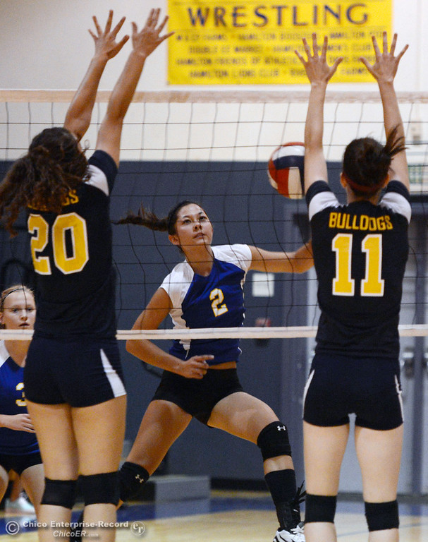 . Hamilton High\'s #2 Raegan Avrit (center) attempts to spike against Gridley High\'s #20 Haylee Coats (left) and #11 Jamie Engel (right) in their first game of their volleyball match Thursday, August 29, 2013 in Chico, Calif.  (Jason Halley/Chico Enterprise-Record)