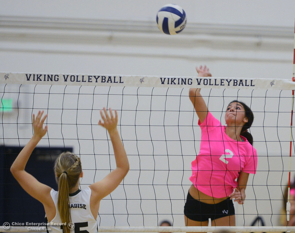 ". Pleasant Valley High\'s #2 Lily Justine (right) spikes against Paradise High\'s #10 Larissa Knifong (left) in the second game of their volleyball match at PVHS Varley Gym Thursday, October 17, 2013 in Chico, Calif. PV volleyball wore pink instead of blue vs Paradise at ""Fight Like a Viking Night,\"" to raise money for cancer research. (Jason Halley/Chico Enterprise-Record)"